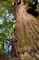 "Nick & Gary up a BIG tree...  Please help those with MOPDII Primordial Dwarfism by making a donation to ""POTENTIALS FOUNDATION"" 