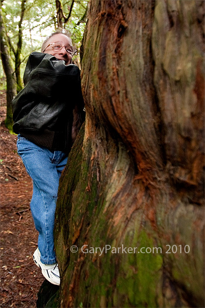 Nick climbing this 20' wide redwood the day before his brain surgery.