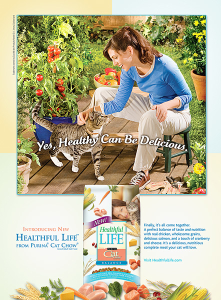 purina healthful life cat food