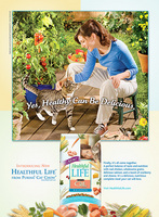Purina Cat Chow - Healthful Life