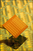 Intel - Silicon Laser Chip  / Macro photography