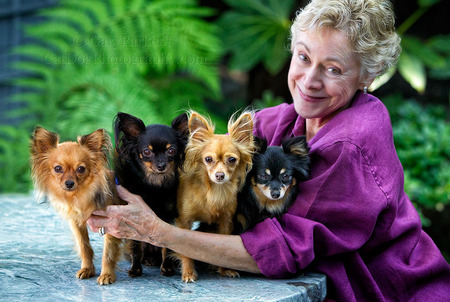 Carol Bailey with her rare Russian Toy Terriers...
