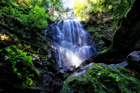 Berry Creek Falls / Big Basin Redwoods State Park
