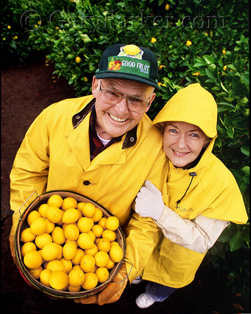 Gourmet Meyer lemon growers, Napa Valley, CA for The New York Times...