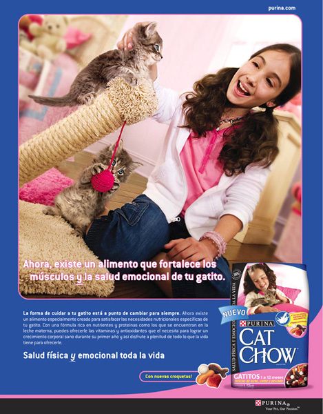 Purina Cat Chow - Latin America