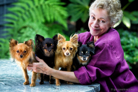 Supporter Carol Bailey with her Russian Toy Terriers for Humane Society Silicon Valley